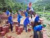 Sinh viên tình nguyện Trường ĐH Công nghiệp Quảng Ninh giúp xây dựng nhà ở cho hộ nghèo ở bản Pạc Sủi, xã Quảng Sơn (Hải Hà).